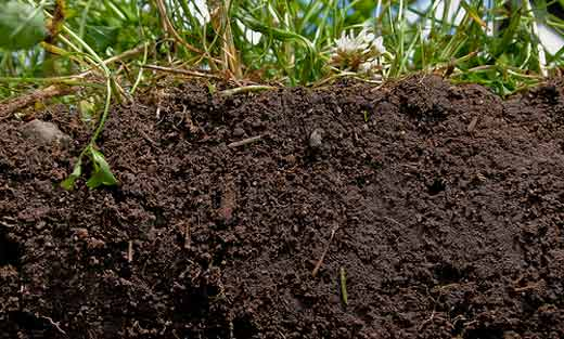 Maine Legislature First in Nation to Recognize Soils